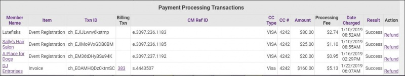Payment Processing Report1.JPG